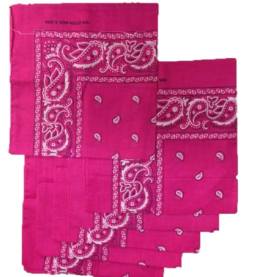 "Paisley Bandana (100% Cotton) - Hot Pink 22"" x 22"" 12 Pack"